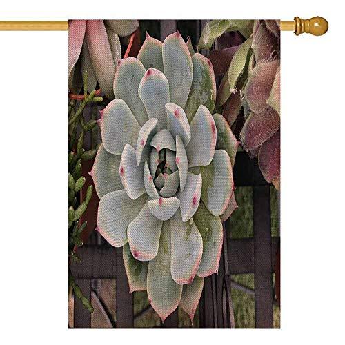 qinzuisp Jardin Drapeaux Plantes De Cactus Succulentes À Plat Désert Petit Cactus en Vacances Jardin Drapeau Décoration Cour Bannière Coloré Bienvenue Impression Recto Verso Saison Extéri
