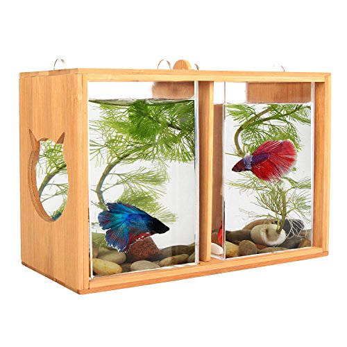 Segarty Small Square Glass Creative Betta Tank