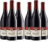 Pinot Noir IGT vin rouge Red Wine Raisins récoltés à la main en culture biologique Torti Wine Award Winning Estate