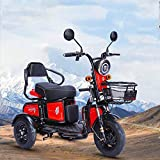 Scooter eléctrico, Motocicleta Triciclo eléctrico, Silla de Ruedas de Viaje al Aire Libre para Personas Mayores, duración de la batería de Gran tamaño, batería de Litio 60V / 48V20A, Rojo, 60v