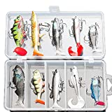 DONQL Soft Fishing Lures Kit, Fishing Lures Baits Tackle Set for Freshwater Trout Bass Salmon-Include Vivid Spinner Baits, Artificial Silicone Bass Baits With Box (10PCS)