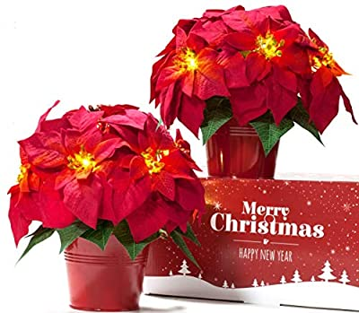 "HOMESEASONS Pack of 2 10"" Potted Pre-Lit Faux Poinsettia Arrangement - LED Lighted Christmas Silk Poinsettia Arrangement (Pack of 2, Red)"