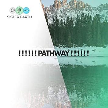 ! ! ! ! ! ! Pathway ! ! ! ! ! !