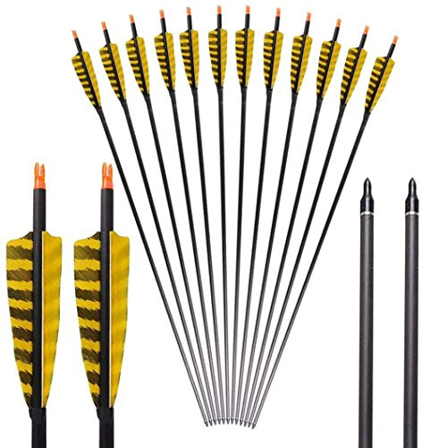 DZGN 32 Zoll Spine 400 Carbon-Jagd Arrows Targeting Pfeile mit 4