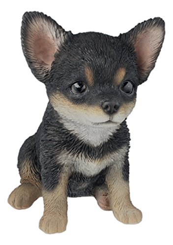 "Nature's Gallery ""Pet Pals"" Statue (Black & White Chihuahua Puppy)"