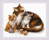 Riolis 1811 - Kit de punto de cruz (algodón, 3024 cm), diseño de gato con gatito