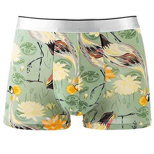 SCDZS Summer Fashion Boxers Personalidad Alta Elasticidad Fina Apretado 4XL de Gran tamaño de Ropa Interior (Size : XXL Code, Style : Style Four)