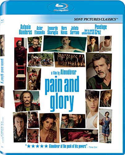 Top 10 Best pain and glory Reviews
