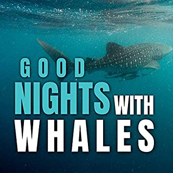 Good Nights with Whales