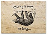 Sorry It Took So Long Sloth Greeting Card - Blank on the Inside - Includes 12 Cards and Envelopes - 5.5'x4.25' (Tan)