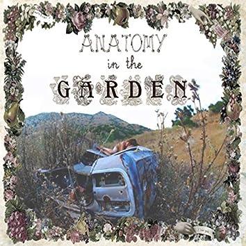 Anatomy in the Garden