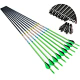 Linkboy Archery Carbon Arrows Hunting Practice Target Removable Tip Points 30 inch Shaft Vanes Arrows for Compound Recurve Long Bows Spine 300 Green Pack of 12
