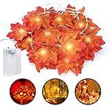 E-More Guirnaldas luminosas Hoja de Arce Artificial, 5M 50LED Luces de Cadena Guirnaldas luminosas de Exterior, Guirnalda de Otoño Lámparas Decoradas Iluminación de Navidad de Exterior