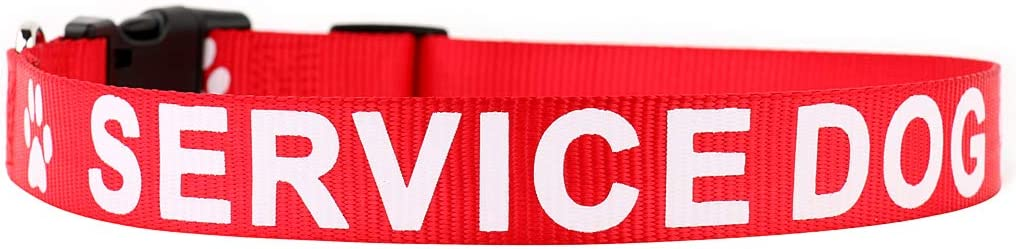 PLUTUS PET Challenge the lowest price Max 84% OFF Service Dog Collar Printed Letters in Nylon Large on