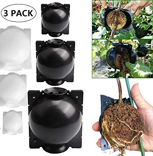 LOVER 3PC Reusable Plant Root Growing Box Grafting,High-Pressure Box Grafting Botany Root Controller Effective Asexual Reproduction (S, Black)