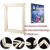 Riou DIY 5D Diamant Painting Zubehör DIY 5D Diamant Malerei Rahmen Bilderrahmen Kreuzstich Stickerei aus Holz Crystal Strass Handwerk für Home Wand Decor gemälde (30X30cm)