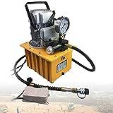 Berkalash - Bomba hidráulica eléctrica, 750 W, 700 bar, bomba eléctrica hidráulica con válvula manual y manguera de aceite de 1,8 m