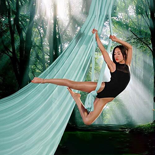 FLY FLU Hamaca De Yoga Aerea, Hamaca De Yoga Aérea Inicio Yoga Yoga Microelástica Hamaca Sling Yoga Estiramiento Yoga Gimnasio,Lakeblue-6M