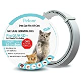 Flea and Tick Collar for Cats/Kittens, Enhanced with Natural Essential Oils, 8 Month Flea and Tick Treatment and Prevention for Cats, One Size Fits All, Adjustable & Waterproof