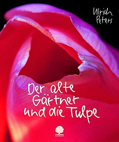 Der alte Gärtner und die Tulpe