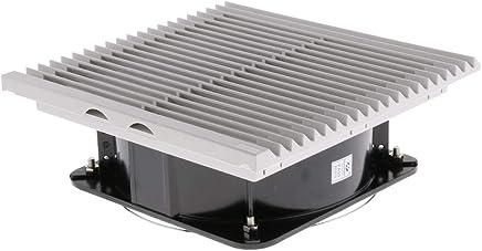 Amazon.es: olor - Cables y conectores / Accesorios: Informática