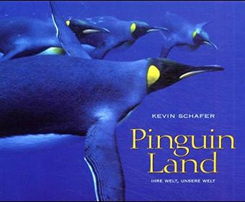 Pinguin Land: Im Bann eines Vogels