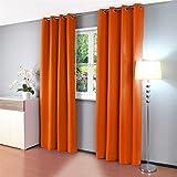 Gräfenstayn cortina térmica y opaca Alana, cortina con ojales, aprox. 135x 245cm, tela, naranja, 135 x 245