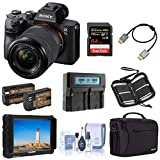 Sony Alpha a7 III Mirrorless Digital Camera with 28-70mm Lens Video Monitor Bundle with Lilliput 7-inch Monitor, Bag, 64GB SD Card, Extra Battery, Dual Charger and Accessories
