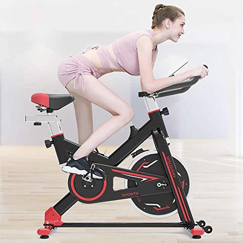 WYZXR Fahrrad, Silent Belt Drive Cycle Bike mit verstellbarem Lenker & Sitz, Fitnessbike und Trainer, Sportausrüstung, idealer Cardio-Trainer