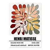 Abstrakte Matisse Ausstellung Wandkunst Bild Bunte Pflanzen