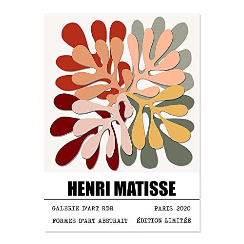 Cuadro abstracto de arte de pared de exposición de Matisse, carteles e impresiones de plantas coloridas, pájaros, lienzo sin marco, pintura A9 50x70cm