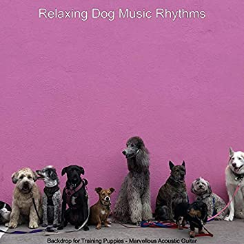 Backdrop for Training Puppies - Marvellous Acoustic Guitar