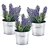 MyGift 6-inch Artificial Lavender...