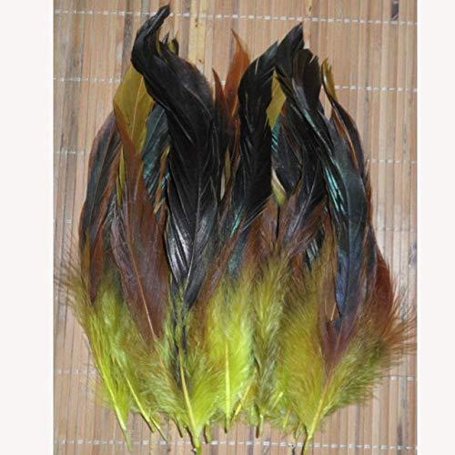 DIY Dye FEASANT FEHERSANTE 50 raíz Vender 12.5-20cm / 5-8 ''