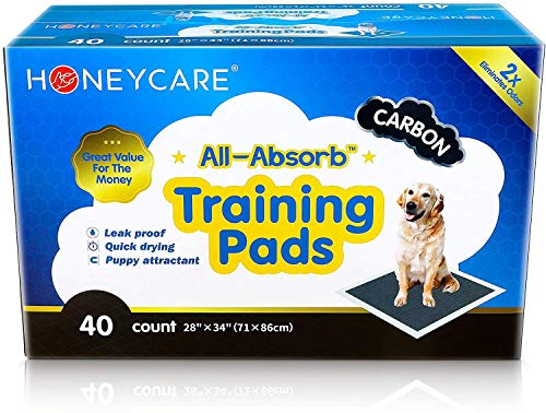 HONEY CARE All-Absorb Puppy Training Pads | Dog Potty Pads Absorb Eliminating Urine Odor, Jumbo-Size Charcoal Puppy Pee Pad (Carbon, XL 28x34 inch, 40ct)