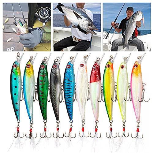 Kits de Señuelos, Weinsamkeit 10 Piezas Señuelo para Pescar, Señuelos Pesca Cebo Artificial Duro Cebos Artificiales Wobblers Wobbler Flotante Swimbait Siluros Bass Lubina Señuelo