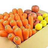 無農薬にんじん野菜セット(無農薬にんじん3kg+りんご1kg+レモン500g)訳あり