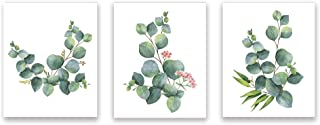 Botanical Home Art Print Flowers Wall Print Eucalyptus Leaves Art Painting Green Plant Modern Home Picture Set of 3 Unframed 8x10 Inch