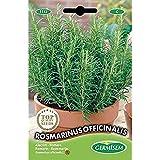 Germisem Rosmarinus Officinalis Semillas de Romero 0.3 g (EC1113)