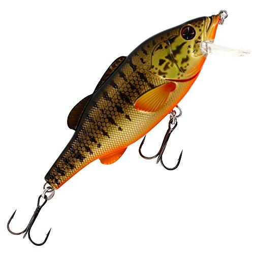 Mosca Barry The Bass Floating 10cm 22G–Señuelo para Pesca a Spinning Lucio, lucioperca & Perca, Cebo Crank Bait, Perca, Lucio Cebo, Smallmouth Bass