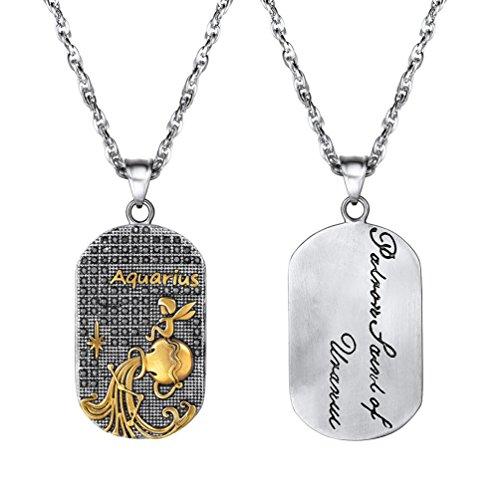 PROSTEEL Collar de Placa de Zodiaco Horóscopo con Santo del Mes, Acuario Chapado en Oro