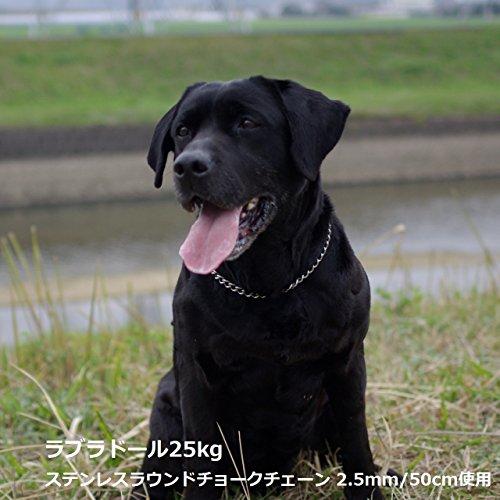 ザ・ブラックラブカンパニー『中・大型犬用BLCオリジナルステンレスミドルリングチェーン』