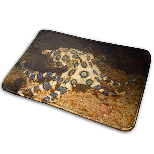 xinping Alfombrilla de baño de espuma viscoelástica con anillo azul, suave y antideslizante, alfombra de baño de terciopelo superabsorbente, 15.7 x 23.6 pulgadas