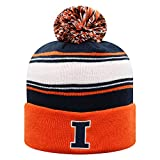 Top of the World Illinois Illini Men's Ambient Warm Team Icon Knit Hat, One Fit
