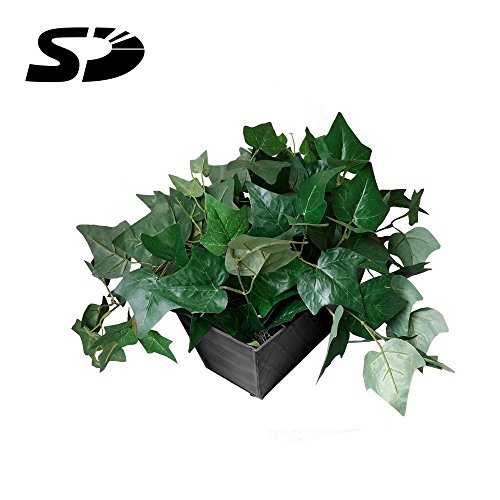 Lowest Prices! SD Card Self Recording Covert Spy Camera (Camera Hidden in Fake Plant)