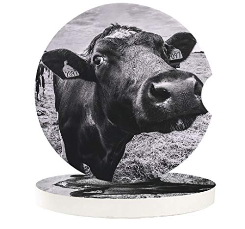 2 Pcs Car Coasters Absorbent Ceramic for Drink - Vintage Black Cow Animal in the Farm Grey Background - Best Interior Decorative Cupholder for Car Accessory