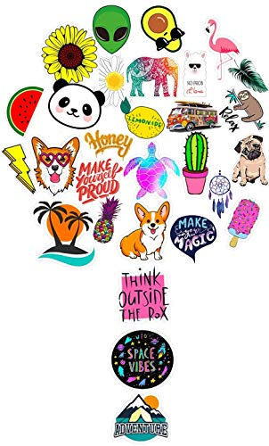 Stickers for Water Bottles, Laptop Skin Decals,Phone Sticker Big 30-Pack Cute,Waterproof,Aesthetic,Trendy Stickers for Teens,Girls Travel