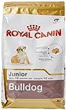 ROYAL CANIN Bulldog Junior 3 kg, 1er Pack (1 x 3 kg)