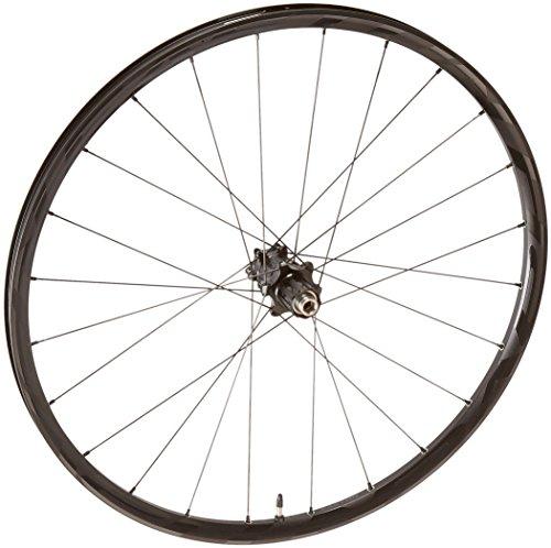 Easton Haven montaña de aluminio ruedas, 7022038, negro, 15x100 27.5-Inch Front