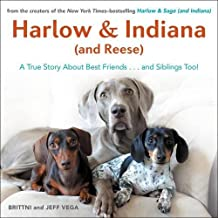 Best harlow and indiana Reviews